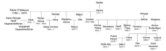 Рис.11 Граф семьи Хаима, сына р. Давида Страшуна
