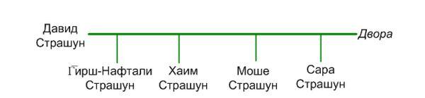 Рис.9 Граф семьи р. Давида Страшуна