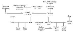 Рис.19 Граф родословной семьи р. Элияг̅у Страшуна