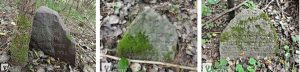 Поросшие мхом оставшиеся надгробные камни