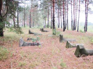 Надгробия-«сапоги» в восточной части кладбища.Фото М.Тяглого